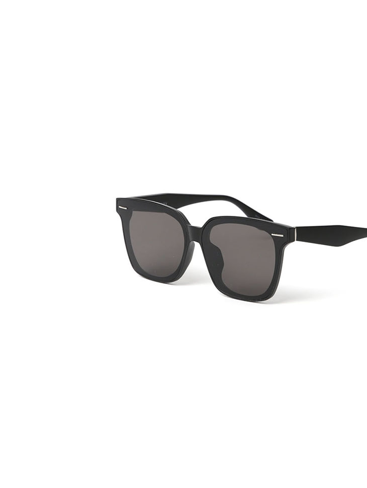 EC-172 chic Point sunglasses