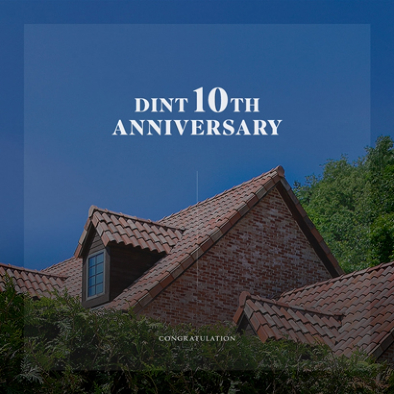 [END] DINT 10th FREE SHIPPING