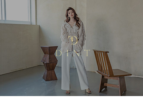 [VIDEO] 2021 S/S DINT