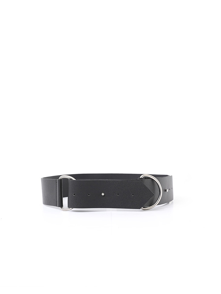 AT-331 Silver Ring Wild Belt