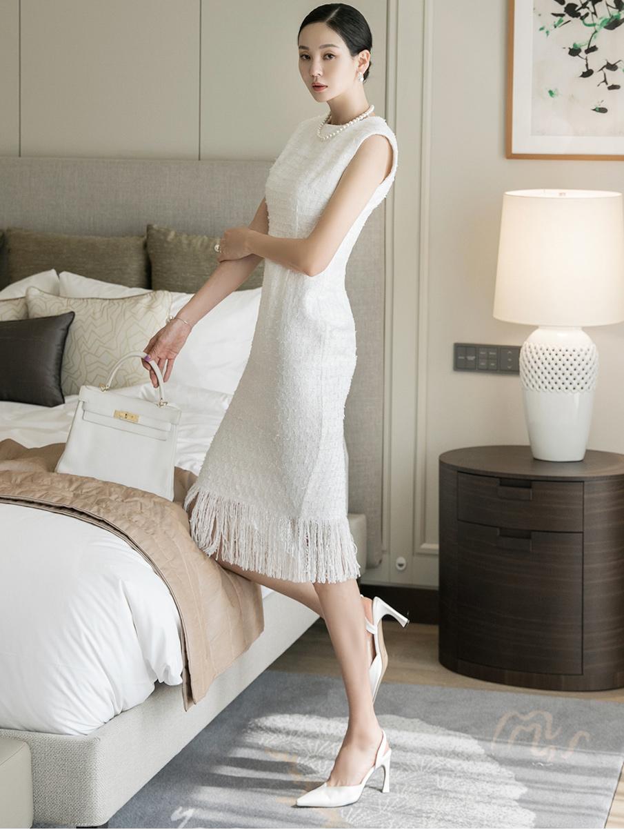 D4032 Sleeve Tweed fringe Dress